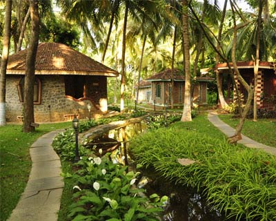 A transforming experience of Ayurveda